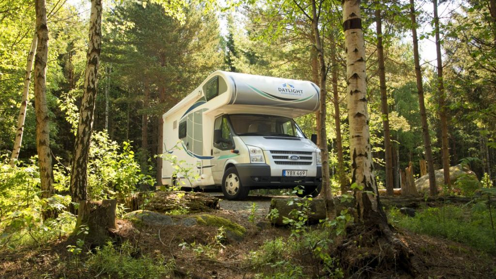 Free camping in Swedish forest